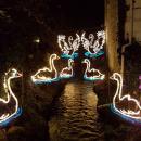 evepa88#angarrack #lights #angarracklights #cornwall #christmas